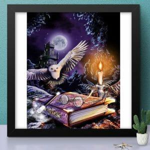 Owl in Night