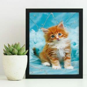 I need Love - Cutest Cat