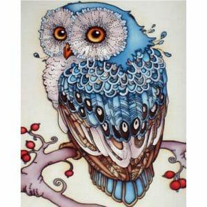The Shy Owl