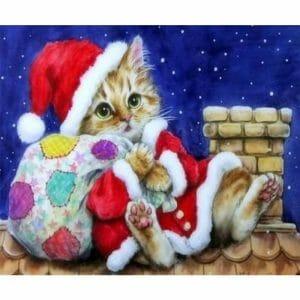 Cat Becomes Santa Claus