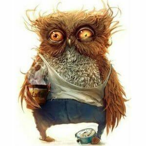 The Lazy Owl