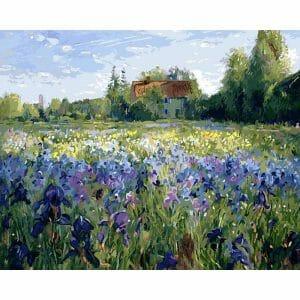 Beautiful Iris Field