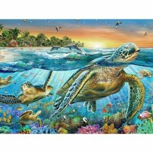 Turtle Enjoying the Nature