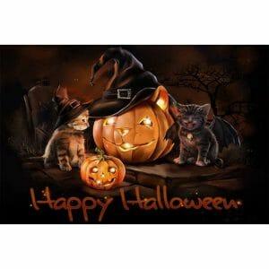 Halloween Cat And Pumpkin