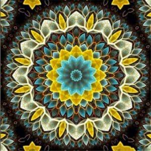 The Mandala Art