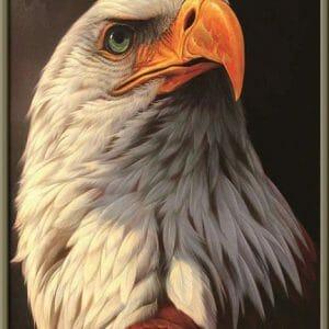 The Amazing Eagle