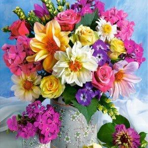 Vibrant Color Flowers
